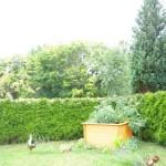 Nachbargarten