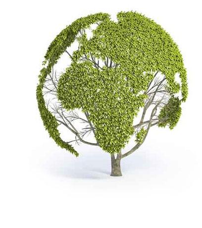 Participate: Planting Campaign