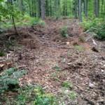 schwere Geräte im Wald